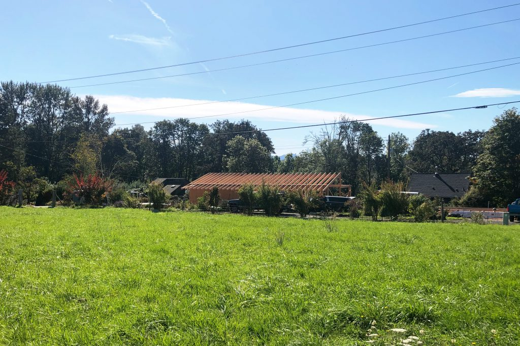 Divine House. View from the neighboring field